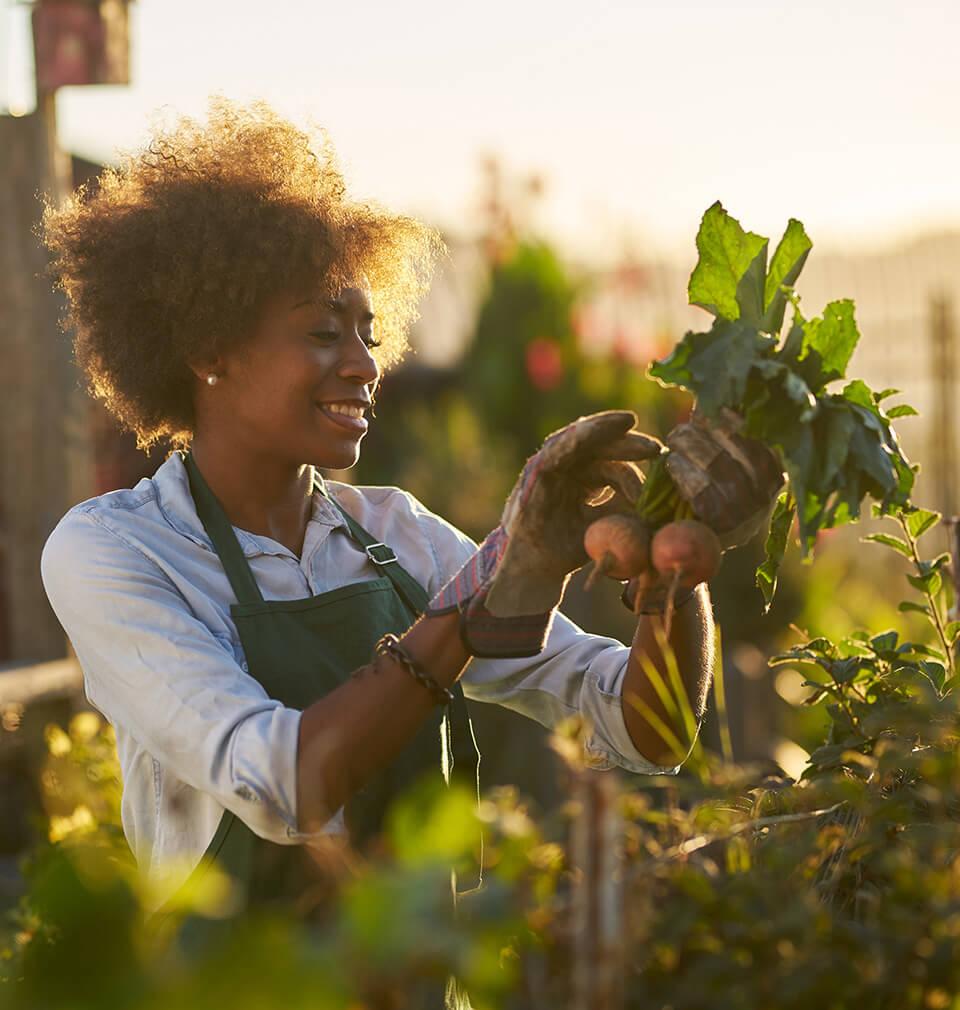 A Black woman gardens
